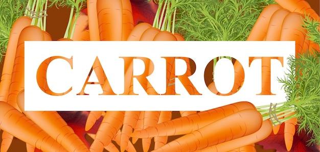 Fundo de texto das cenouras