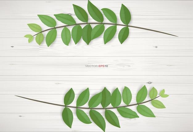 Fundo de textura de madeira com folhas verdes. ilustração vetorial realista.