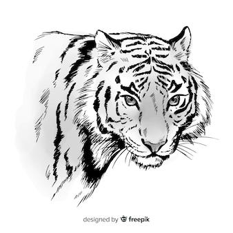 Fundo de tigre de mão desenhada