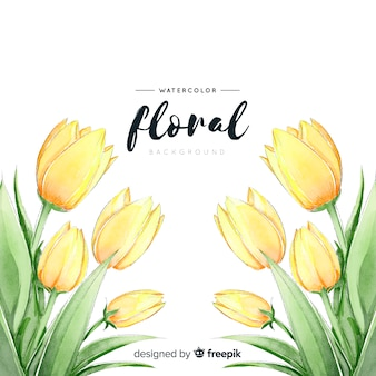 Fundo de tulipas da primavera