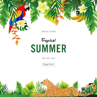 Fundo de venda de verão com vector design tropical