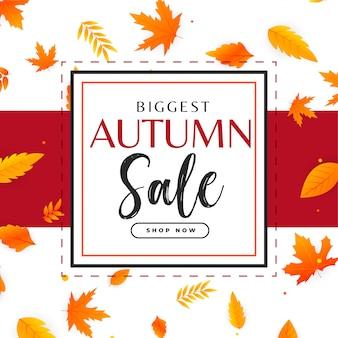 Fundo de venda outono com folhas padrão