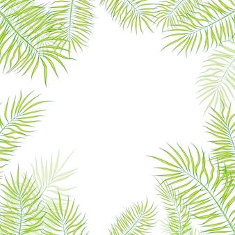 Fundo de verão com folhas de plantas