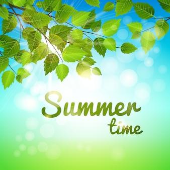 Fundo de verão com folhas verdes frescas em um galho saliente e sol quente