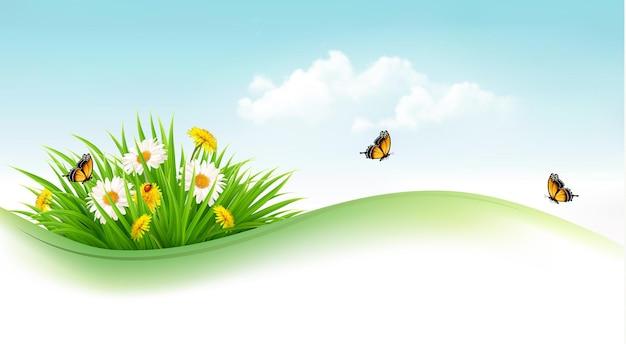 Fundo de verão com grama, flores e borboletas. vetor.