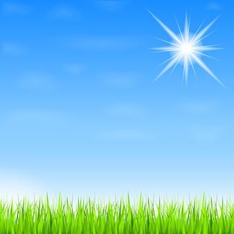 Fundo de verão com grama verde e sol,