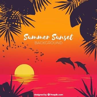 Fundo de verão com silhueta de palmeiras e golfinhos