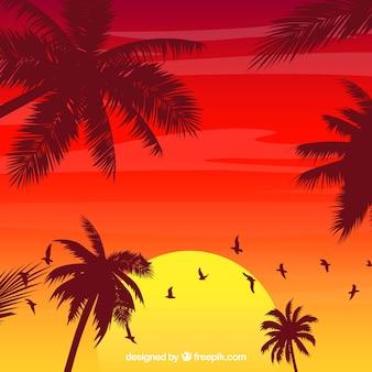 Fundo de verão com silhuetas de árvore de palma
