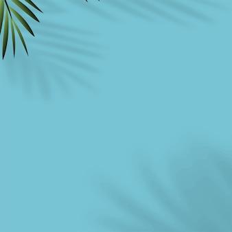 Fundo de verão com sombra de folhas tropicais.