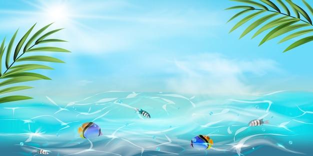 Fundo de verão. textura da superfície da água. fundo de cena de natureza mundo subaquático. oceano, vida no fundo do mar com água azul, ervas marinhas, peixes exóticos, bolhas, algas, raios de sol.