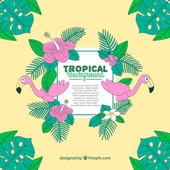 Fundo de verão tropical com flamingos e plantas