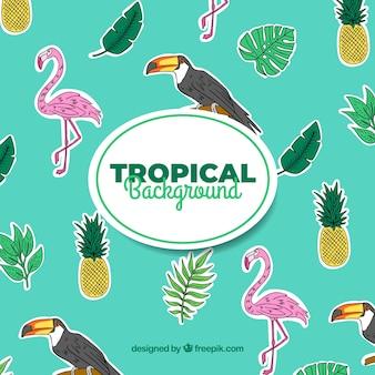 Fundo de verão tropical com pássaros e plantas