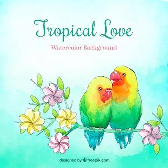 Fundo de verão tropical com pássaros em estilo aquarela