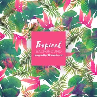 Fundo de verão tropical com plantas coloridas