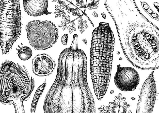 Fundo de vetor de vegetais desenhados à mão. modelo de banner de ingredientes de alimentos saudáveis. vegetais vintage, ervas, ilustrações de cogumelos para menu, banner da web, receitas, branding. ilustração vetorial.