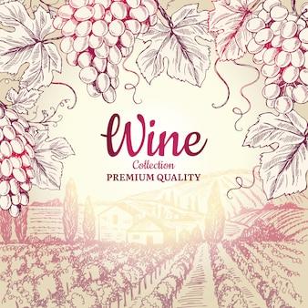 Fundo de vinho. uvas folhas ramo garrafas saca-rolhas símbolos para menu de restaurante de quadro