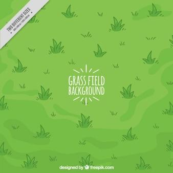 Fundo desenhado mão do campo de grama