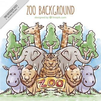 Fundo desenhado zoo mão com árvores