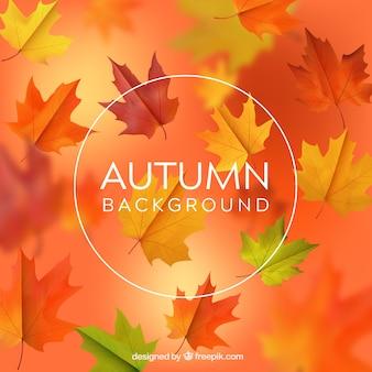 Fundo desfocado de outono em estilo realista