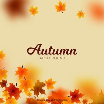 Fundo desfocado de outono