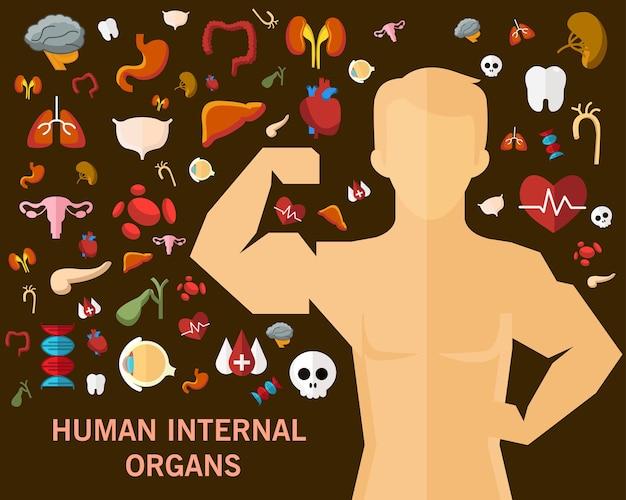 Fundo do conceito dos órgãos internos humanos. ícones planas.