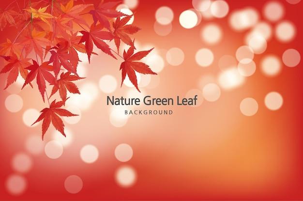 Fundo do efeito bokeh natural da atmosfera do outono