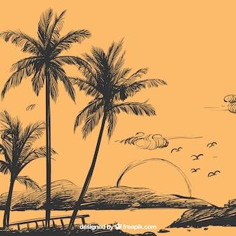 Fundo do esboço da árvore de palma
