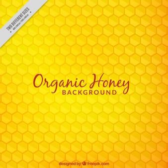 Fundo do favo de mel