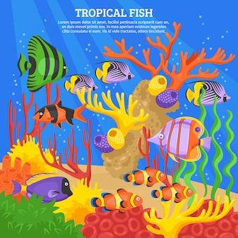 Fundo do mar peixes tropicais
