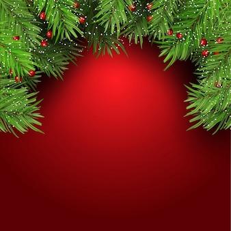 Fundo do natal com galhos de árvore de abeto e bagas