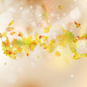 Fundo do tema folhas de outono.