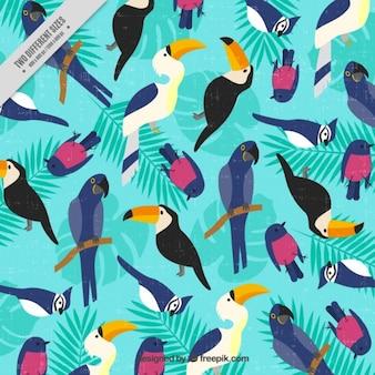 Fundo do vintage com pássaros tropicais