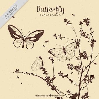 Fundo do vintage de flores e borboletas desenhadas mão