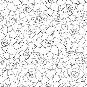 Fundo e padrão sem emenda de vetor de suculenta flor do deserto desenhada à mão em estilo doodle