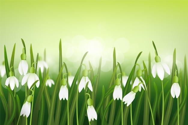 Fundo embaçado de primavera realista