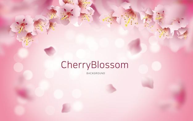 Fundo flor de cerejeira