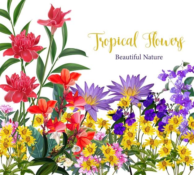 Fundo flor tropical
