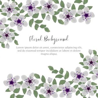 Fundo floral com moldura de flor de cerejeira