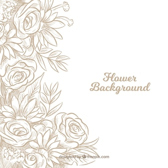 Fundo floral com rosas desenhadas à mão
