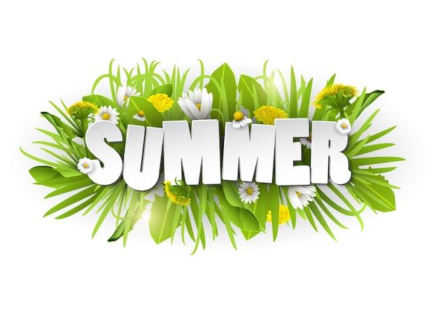 Fundo floral de verão com flores e camomiles