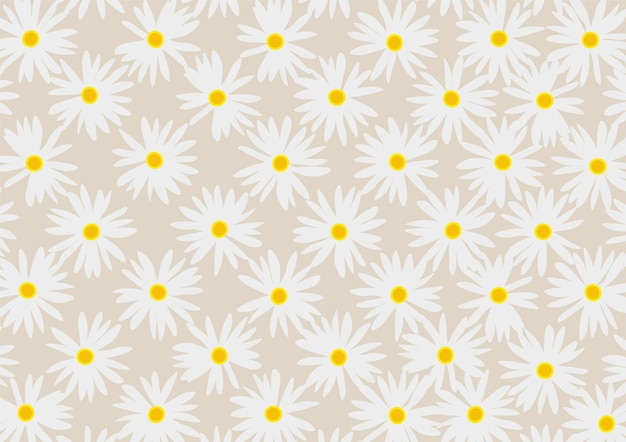 Fundo floral margarida
