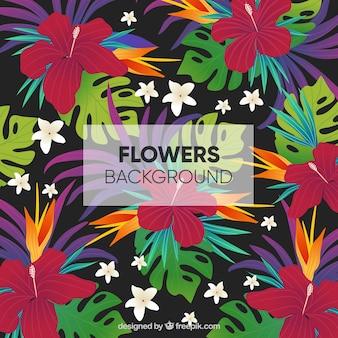 Fundo floral plano com estilo tropical