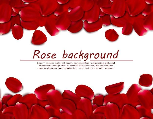Fundo horizontal realista de pétalas de rosa