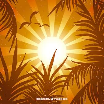 Fundo laranja verão com folhas tropicais
