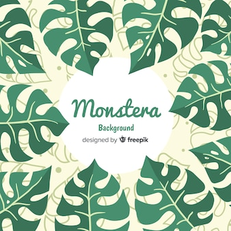 Fundo liso monstera
