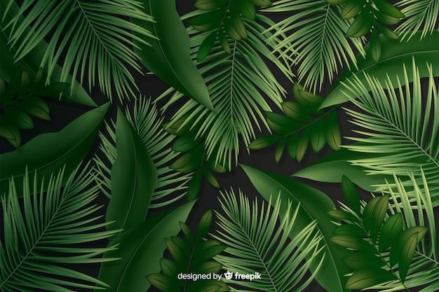 Fundo natural com folhas realistas