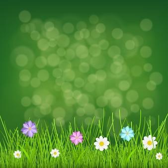 Fundo natural com grama verde e flores multicoloridas