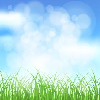 Fundo natural de primavera de grama, céu, brilho do sol