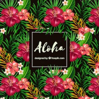 Fundo plano de flores aloha