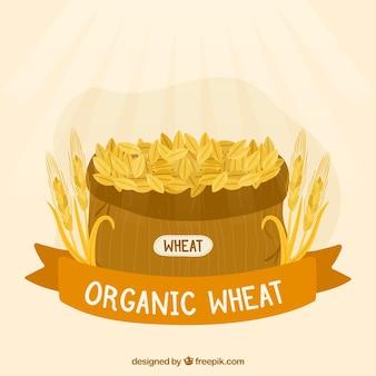 Fundo plano de trigo